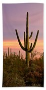 Twilight After Sunset In The Cactus Forests Of Saguaro National Park Beach Towel