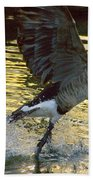 Twilight Goose I Beach Towel
