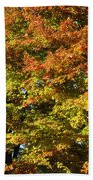 Twin Maples Beach Towel