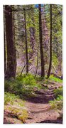 Twisp River Trail Beach Towel