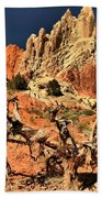 Twisted And Colorful Beach Towel
