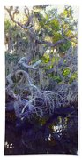 Twisted Tree Beach Towel by Carey Chen
