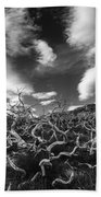 Twisted Trees And Clouds Beach Sheet