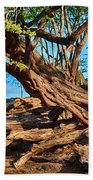 Twisting Trees Beach Towel