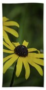 Two Black Eyes On The Macomb Orchard Trails Beach Towel