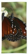 Two Butterflies Beach Towel