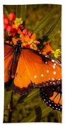 Two Butterflies Beach Towel