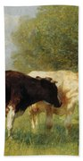 Two Cows In A Meadow Beach Towel