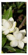 Awesome Blossoms Beach Towel