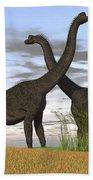 Two Large Brachiosaurus In Prehistoric Beach Towel