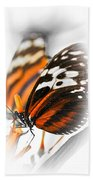 Two Large Tiger Butterflies Beach Towel