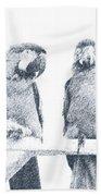 Two Macaws Beach Sheet