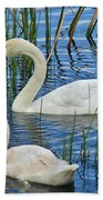 Two Mute Swans Beach Towel