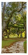 Two Paths Diverged In A Live Oak Wood...  Beach Towel