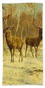 Two Stags In A Clearing In Winter Beach Towel