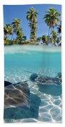 Two Stingrays 1 Beach Towel