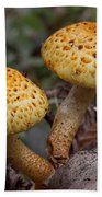 Two Toadstool Chums On A Log Beach Towel