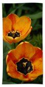Two Tulips Beach Towel