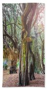 Two Tunnels Taxus Beach Towel