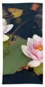 Two Water Lillies Beach Towel