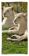 Two White Lions Beach Towel