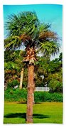 Tybee Palm Beach Towel