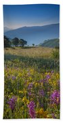 Umbria Wildflowers Beach Towel