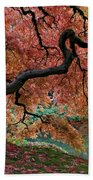 Under Fall's Cover Beach Towel