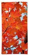 Under The Orange Maple Tree Beach Towel by Rona Black