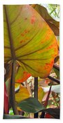 Under The Tropical Leaves Beach Towel