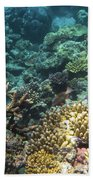 Underwater Color Beach Sheet