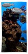 Underwater View Beach Towel