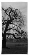 Winters Gloom Beach Towel