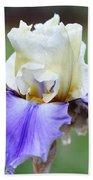 Up Close Elegant Iris Beach Towel