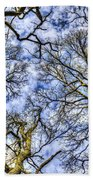 Up Into The Trees Beach Towel