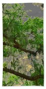 Up Through The Haunted Tree Beach Towel