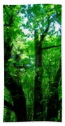 Up Through The Trees Beach Towel