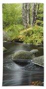 Upper Bear River In Early Autumn Nova Beach Towel