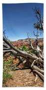 Uprooted - Bryce Canyon Beach Towel