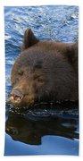 Ursa Mirrored Beach Towel