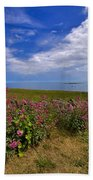 Valerian By A Stone Wall On The Northumberland Coast Beach Towel