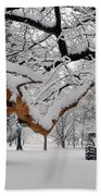 Valley Forge Winter 9817 Beach Towel