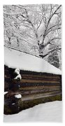 Valley Forge Winter 9887 Beach Towel