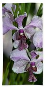 Vanda Emma Van Derventer 6906 Beach Towel