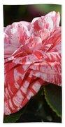 Variegated Camellia Beach Towel