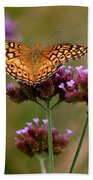 Variegated Fritillary Butterfly Square Beach Towel