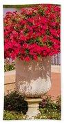 Vase Of Petunias Beach Towel