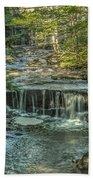 Vaughan Woods Stream Beach Towel