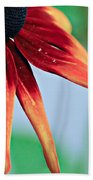 Velvet Petals Beach Towel