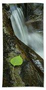 Vermont Aspen Leaf Waterfall Camels Hump Duxbury Beach Towel